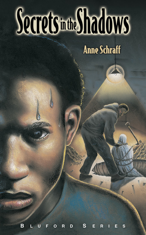 Cover: Secrets in the Shadows: #3