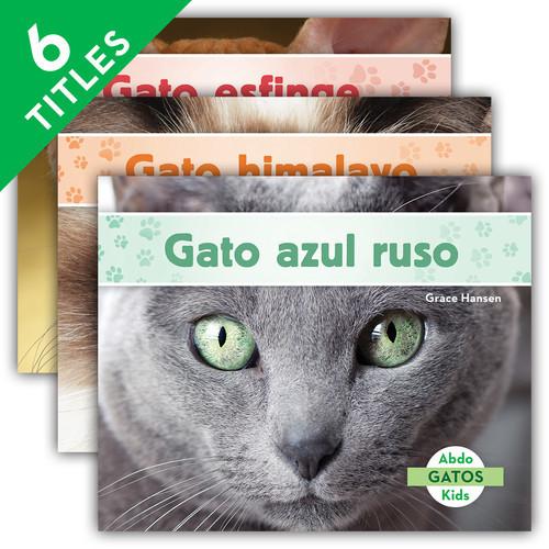 Cover: Gatos (Cats Set 2)
