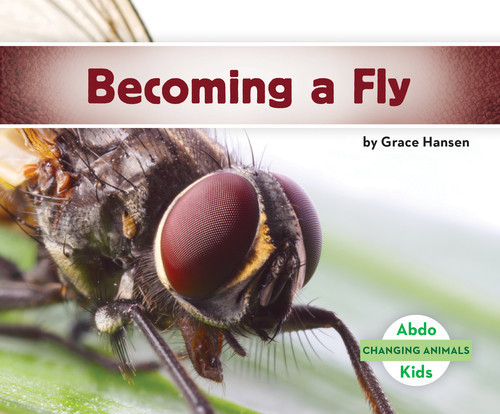 Cover: Becoming a Fly