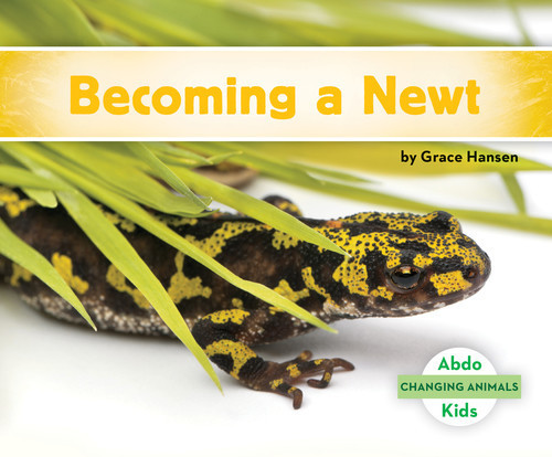 Cover: Becoming a Newt