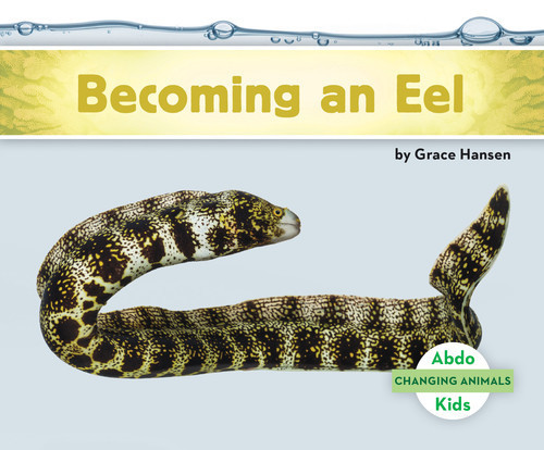 Cover: Becoming an Eel