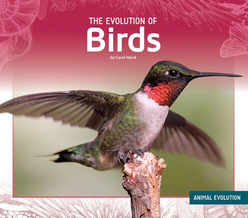 Cover: The Evolution of Birds