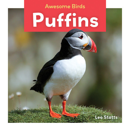 Cover: Puffins