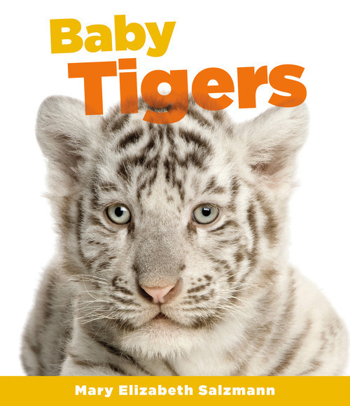 Cover: Baby Tigers
