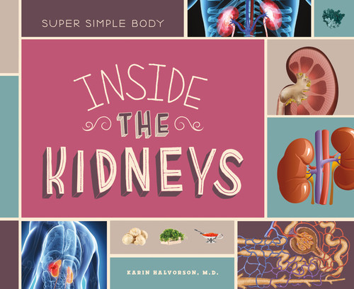 Cover: Inside the Kidneys