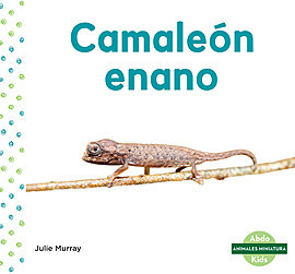 Cover: Camaleón enano (Leaf Chameleon)