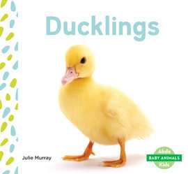 Cover: Ducklings