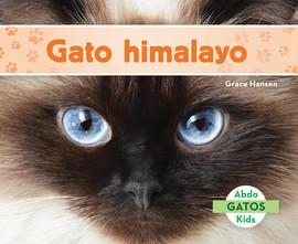 Cover: Gato himalayo