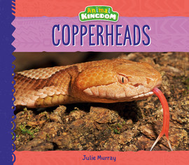 Cover: Copperheads