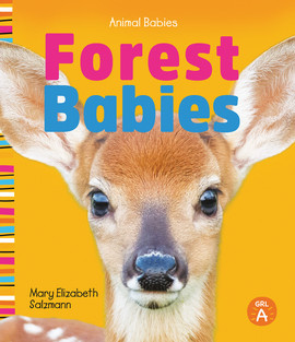 Cover: Forest Babies