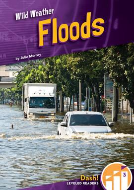 Cover: Floods