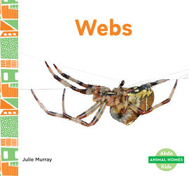 Cover: Webs