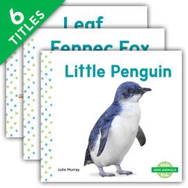 Cover: Mini Animals