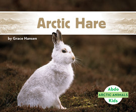 Cover: Arctic Hare