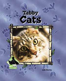 Cover: Tabby Cats