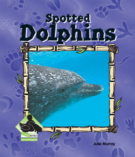 Cover: Spotted Dolphin