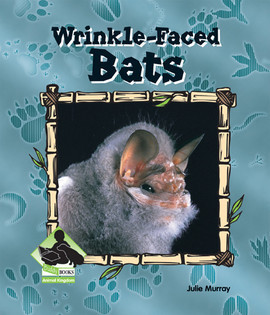 Cover: Wrinkle-Faced Bats