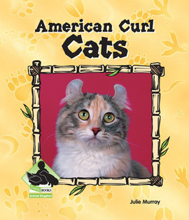 Cover: American Curl Cats