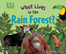 Cover: What Lives in the Rain Forest?