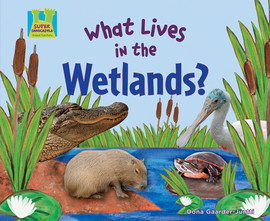 Cover: What Lives in the Wetlands?