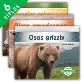 Cover: Animales de América del Norte (Animals of North America) (Spanish Version)