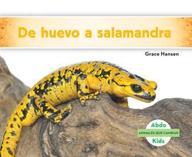 Cover: De huevo a salamandra