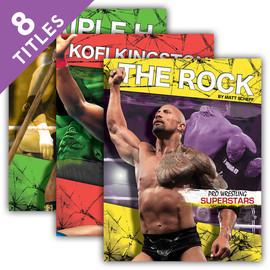 Cover: Pro Wrestling Superstars