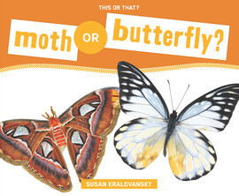 Cover: Moth or Butterfly?