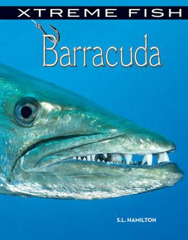 Cover: Barracuda