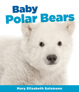 Cover: Baby Polar Bears