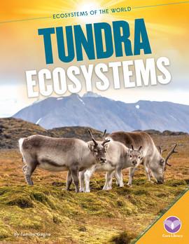 Cover: Tundra Ecosystems