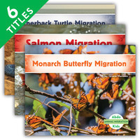 Cover: Animal Migration