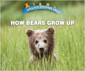 Cover: Animals Growing Up