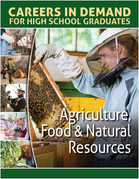 Cover: Careers in Demand for High School Graduates