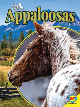 Cover: All About Horses
