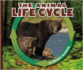Cover: Nature Cycles