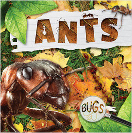 Cover: Bugs