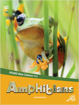 Cover: Animals Have Classes Too!