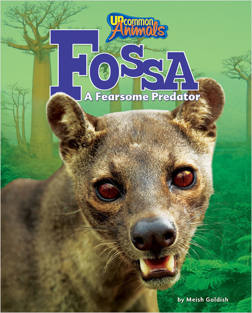 Cover: Fossa