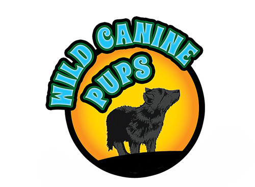 Cover: Wild Canine Pups