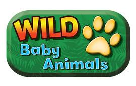 Cover: Wild Baby Animals