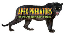 Cover: Apex Predators of the Amazon Rain Forest