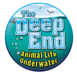Cover: The Deep End