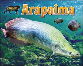 Cover: Arapaima