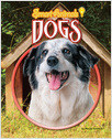Cover: Dogs