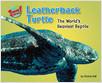 Cover: Leatherback Turtle