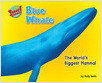 Cover: Blue Whale