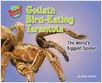 Cover: Goliath Bird-Eating Tarantula