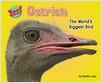 Cover: Ostrich