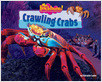 Cover: Crawling Crabs